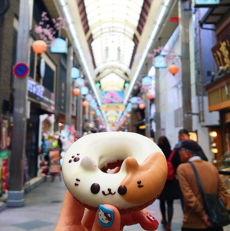 "The cuuuutest handmade cat donut from Floresta Nature Donuts @floresta_nature_doughnuts at Shin Kyogoku 新京極 Market in Kyoto. These are called Doubutsu Donut どうぶつドーナツ or ""Animal Donut""."