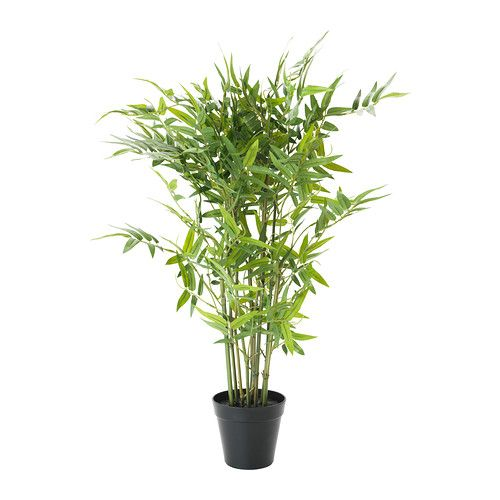 IKEA - FEJKA, Artificial potted plant, Lifelike artificial plant that remains…