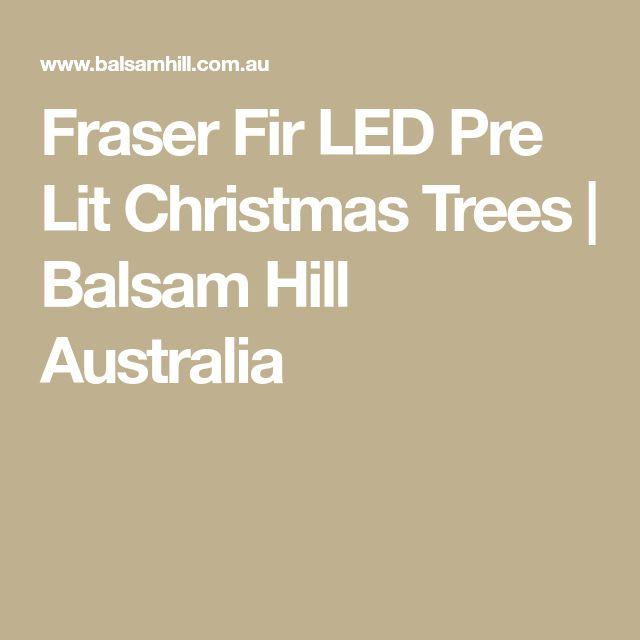 Fraser Fir LED Pre Lit Christmas Trees | Balsam Hill Australia