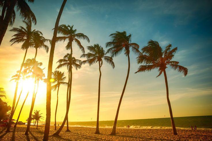 Nordeste brasileiro: PRAIA DE CUMBUCO (CEARÁ) A 30 quilômetros de Fortaleza, no município de Caucaia, Cumbuco é um paraíso para praticantes de kitesurfe. É possível fazer aulas do esporte ou se aventurar em um passeio de bugue pelas dunas - com ou sem emoção!