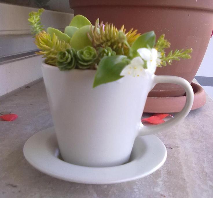 bomboniera floreale