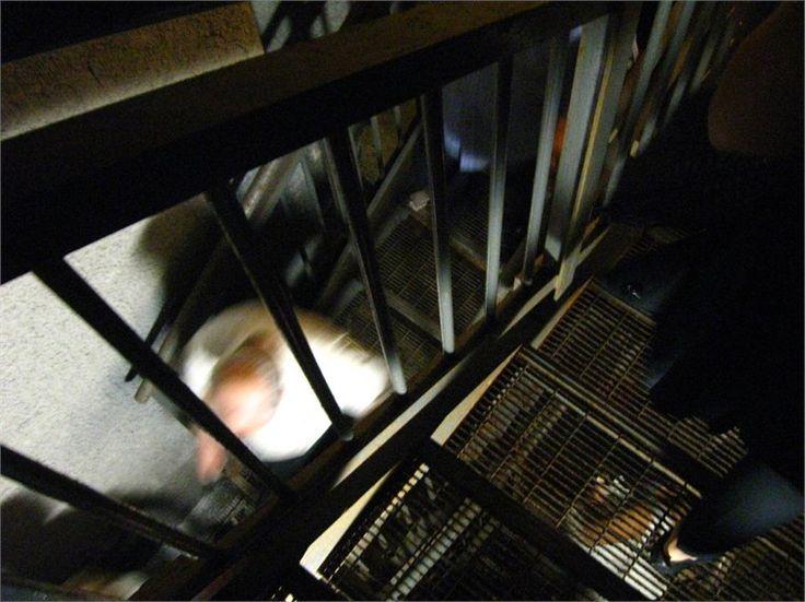 torrente Àposa: la riscoperta del corso sotterraneo = Realizzazione: anno 2000 - PROGETTO E DIREZIONE DEI LAVORI arch. Francisco Giordano - http://ec2.it/franciscogiordanoarchitetto/projects/70839-ACCESSI-AL-CORSO-INTERRATO-DEL-TORRENTE-POSA-BOLOGNA-Arch-Francisco-Giordano