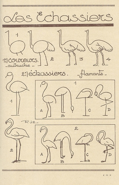 how to draw flamingos