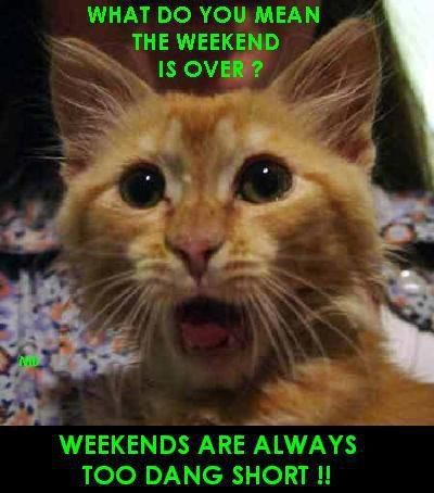 17 Best images about Where did the weekend go? on Pinterest  Mobile wallpape...