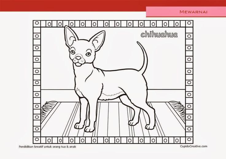 lembar kerajinan anak paud (balita/TK/SD), mewarnai anjing chihuahua