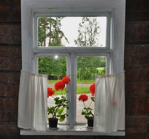 Pelargoniat Lepikon torpan ikkunalla. | Kuvakuja.fi
