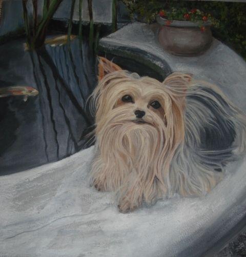 Oil painting of Bella, Yorkie