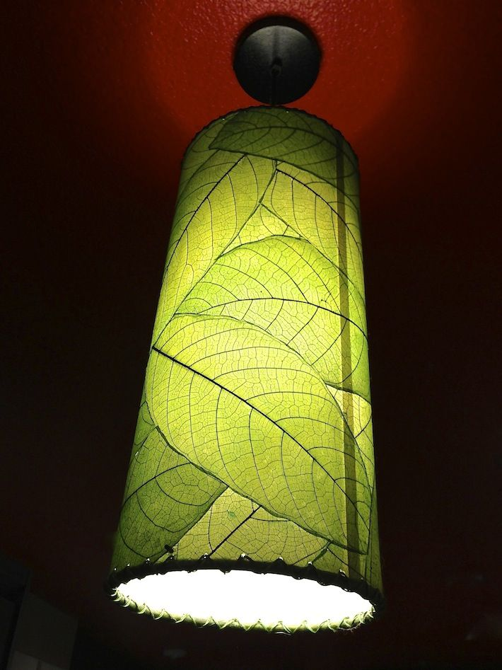 A House Plant Lights Up...decoupaged Leaves On A Simple Lampshade...delish!  | Rad Repurposing | Lamp Shades, DIY, Lampshades