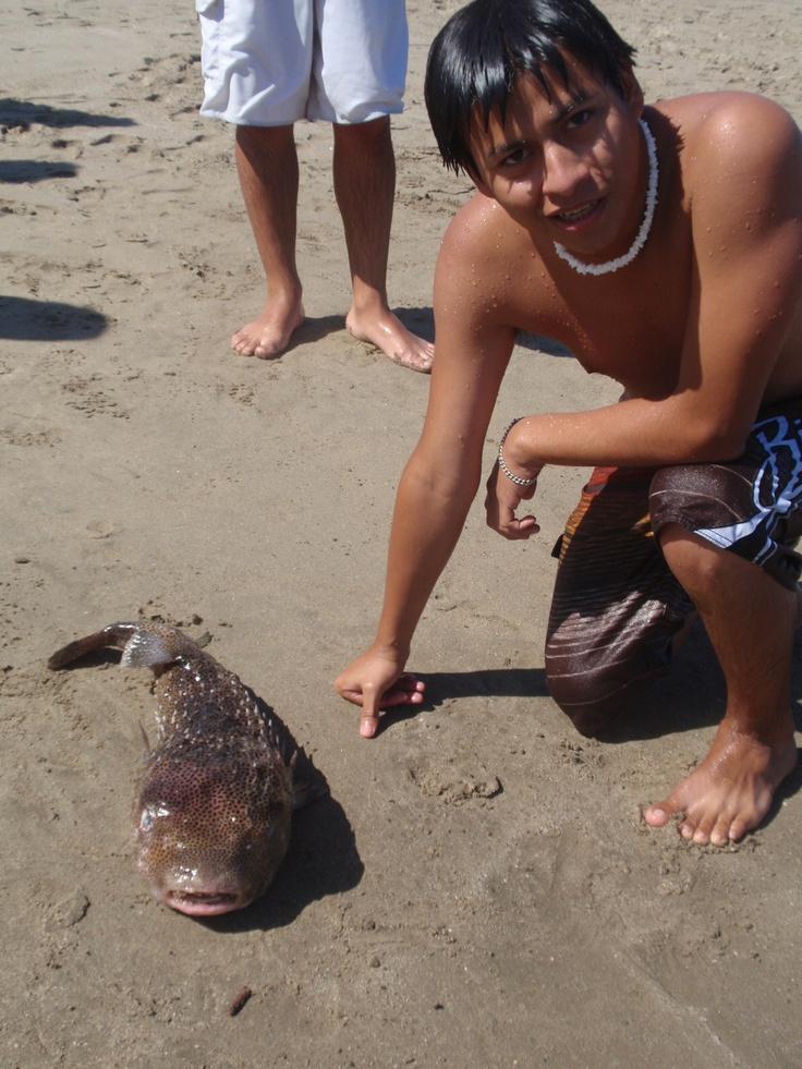 En Punta Sal - Tumbes con un pez muy bonito