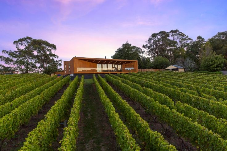 How winery owners live in Australia – Family home that makes most of the…
