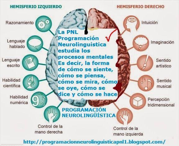 La PNL Programación Neurolingüística estudia los procesos mentales