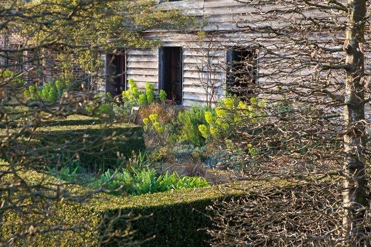 17 meilleures images propos de jardin plume sur for Le jardin plume