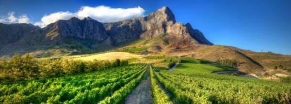 L'Ormarins- 10 minutes from La Clé des Montagnes -4 luxurious villas on a working wine farm