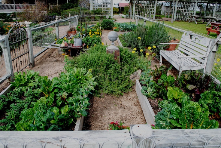 gorgeous small space vegetable garden One day I will