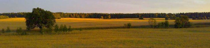 Zapraszamy do Pensjonatu Tymawa na Mazurach :) www.tymawa.pl