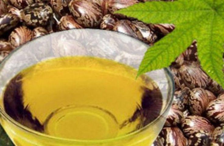 Τα οφέλη του καστορέλαιου πολλές φορές παραβλέπονται   λόγω της πυκνής, κολλώδης υφής του,...