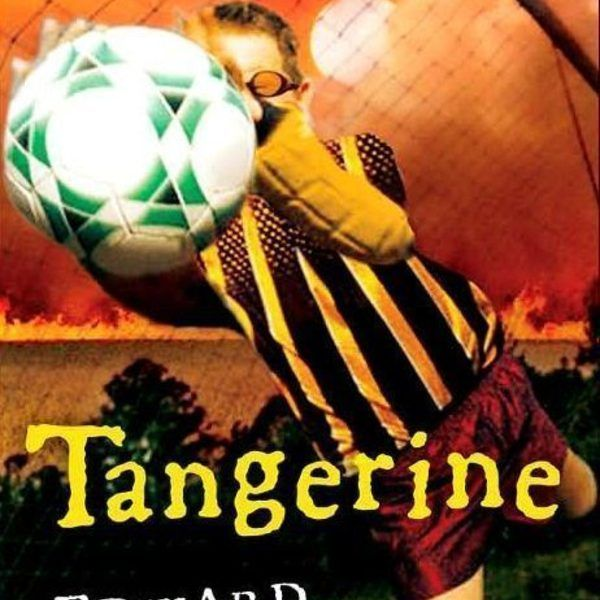 Novel Study: Tangerine By Edward Bloor. Novel discussion questions