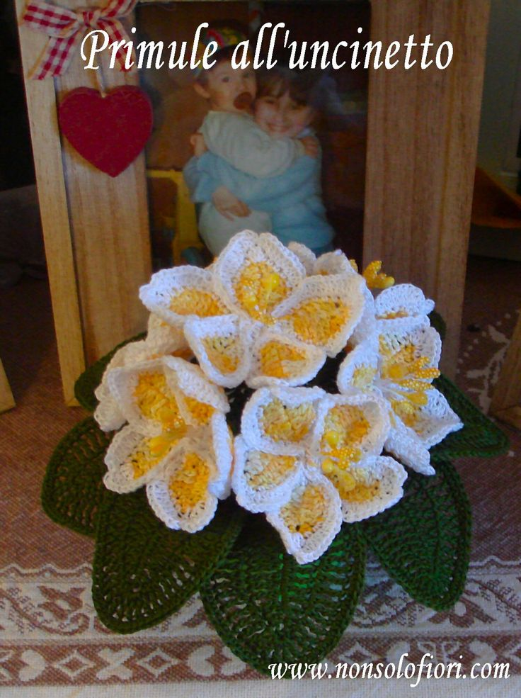 Vasetto di primule all'uncinetto ️ www.nonsolofiori.com #primule #uncinetto #primroses #crochet #prímulas #ganchillo