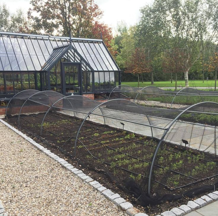 Looking for a crop protection solution? Our high top hoops as used here at Chewton Glen in the James Martin cookery school are available in plenty of sizes and have optional linking rods to prevent your netting from sagging onto your crops. You could team them up with anti butterfly netting for brassicas, anti bird netting, insect mesh or even fleece. With a range of sizes, linking bars, ground anchors and net options they are the best solution for crop protection in any garden.