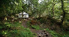 Yurt Camp Devon & Dartmoor, small secluded woodland yurts