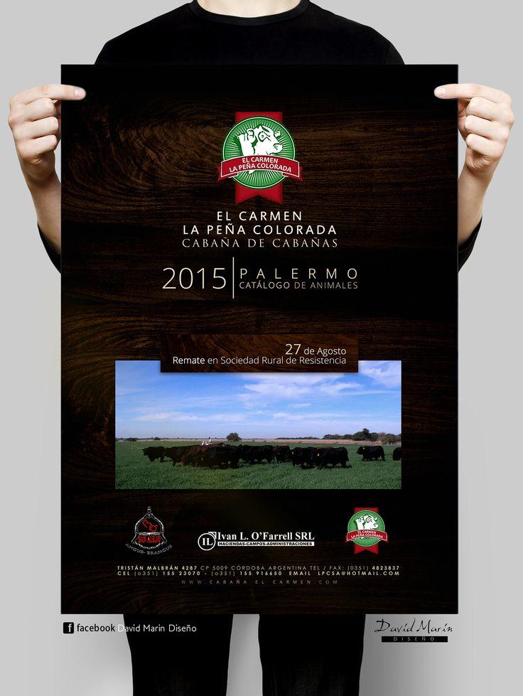 Flyer para El Carmen la Peña Colorada