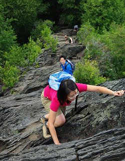 Top 50 Asheville Hikes & NC Mountain Trails