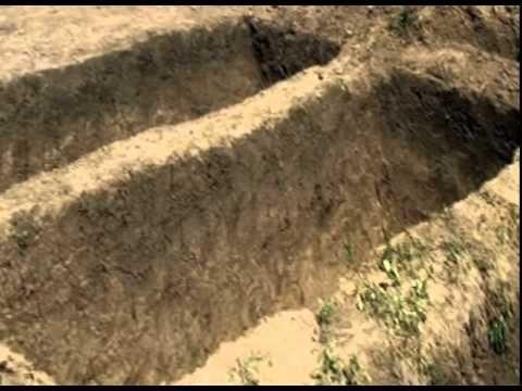контрофактные могилы