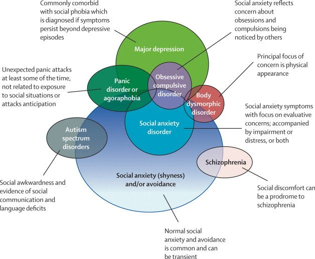 Conditions that commonly overlap with social anxiety disorder (social phobia) and might be considered in the differential diagnosis of an individual with social anxiety symptoms