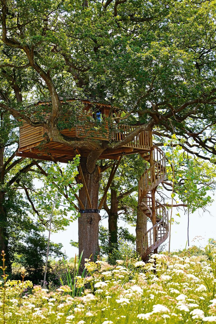 These Spectacular Tree Houses Redefine Small-Space Living Photos | Architectural Digest