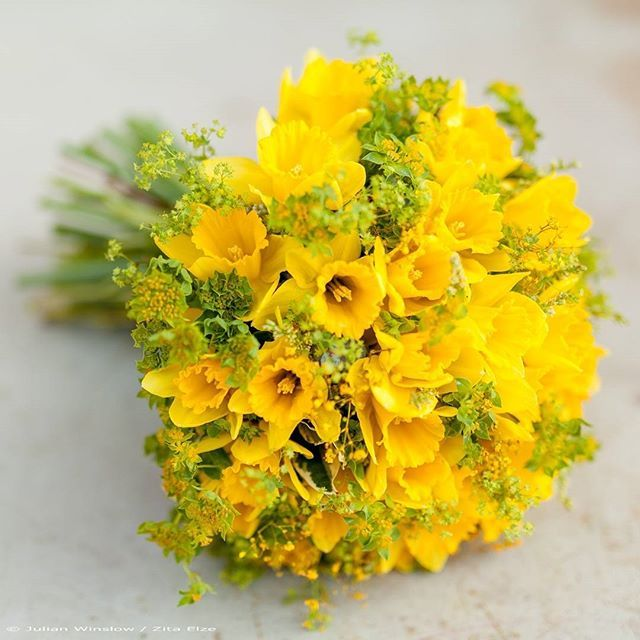Yellow daffodil spring bridal bouquet