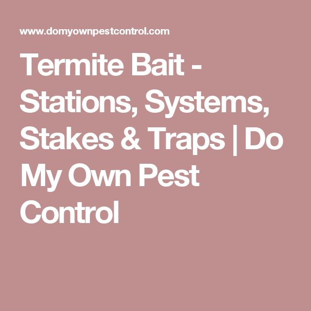 Termite Bait - Stations, Systems, Stakes & Traps | Do My Own Pest Control