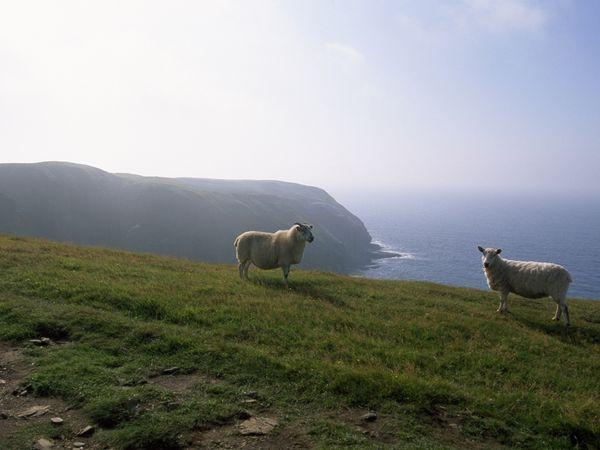 Road Trip: Cape Breton, Nova Scotia -- National Geographic - via http://bit.ly/epinner