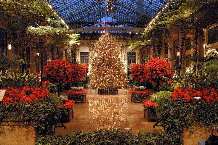 No holiday is complete without a visit to Longwood Gardens Christmas, with 400,000+ twinkling lights and spectacular fountain shows. (Photo courtesy Longwood Gardens)