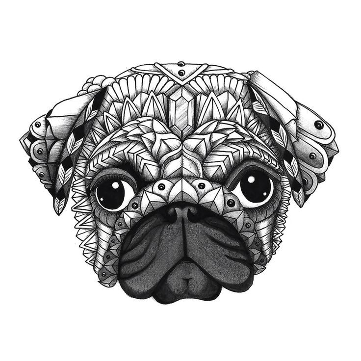 """Ornate Pug from the upcoming """"Decorative Dogs"""" coloring book. Get free printable pages to download and color from Color Serenity at www.colorserenity.com! http://www.colorserenity.com"""