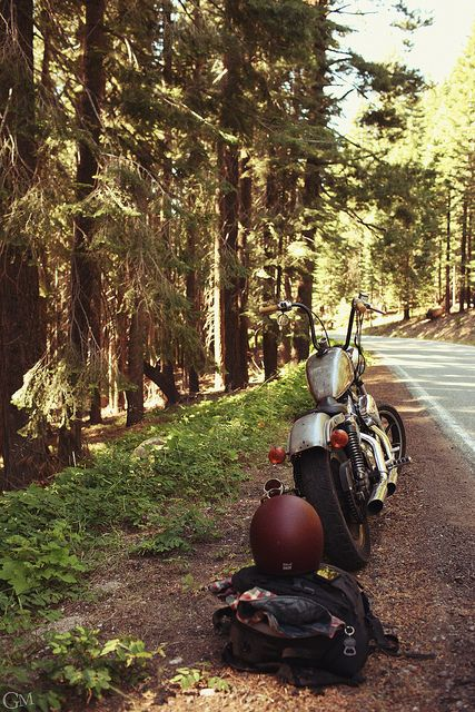 #motorcycle #forest #road
