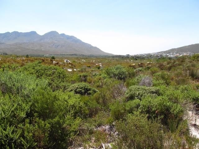 Farm For Sale in Pringle Bay | Rooi-Els | Gumtree South Africa | 142365547