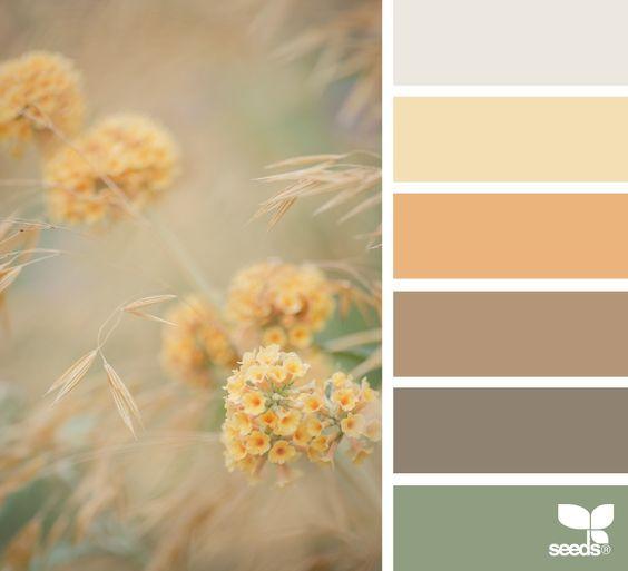 Progetto cromatico dalla teoria alla pratica for Combinazioni colori arredamento