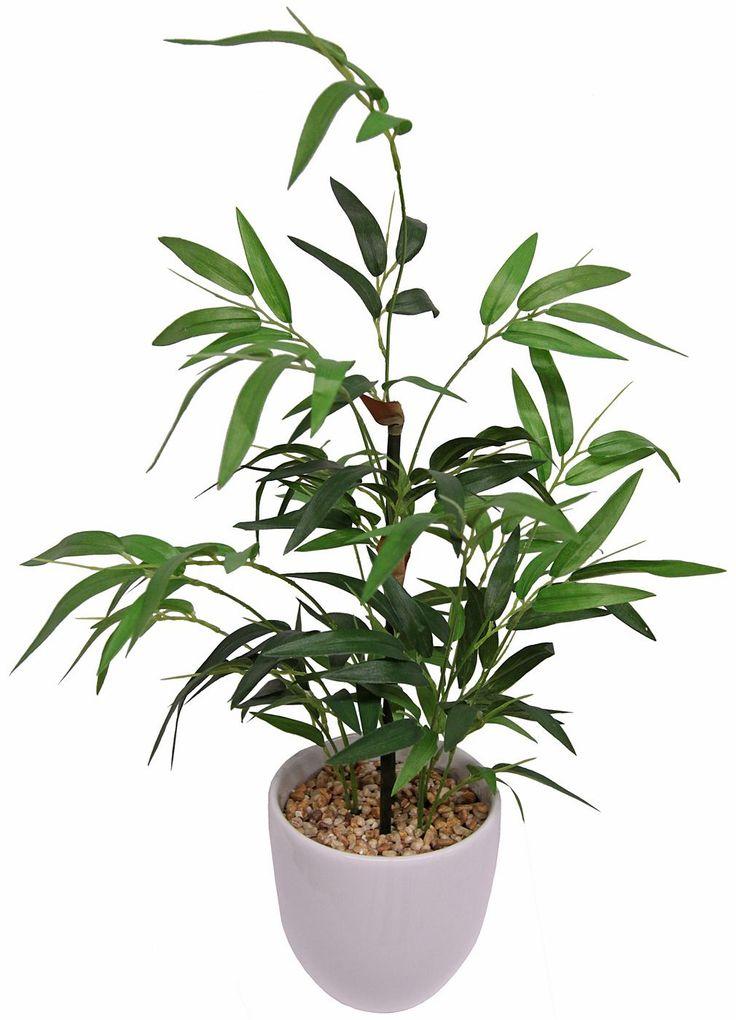 Pflegeleicht, das ganze Jahr - dafür steht diese Pflanze. Die Kunstpflanze von Home affaire sieht besonders natürlich aus - die Gräser sind detailgetreu einer echten Pflanze nachempfunden und erfreut so das Auge des Betrachters.  Der künstliche Bambus ist fest verankert in einem glänzend weißen Keramiktopf, der mit Dekosteinchen gefüllt ist. So ziert diese Kunstblume von Home affaire in Regalen...