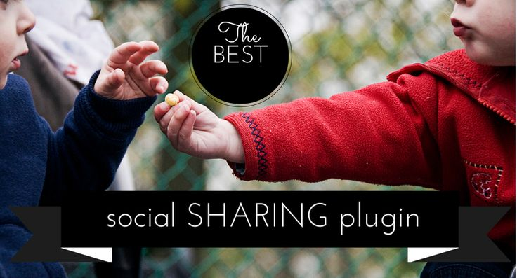 While Looking For The Best Social Sharing Plugin I fell in Love: Do you know which WordPress social media plugin is being talked about?