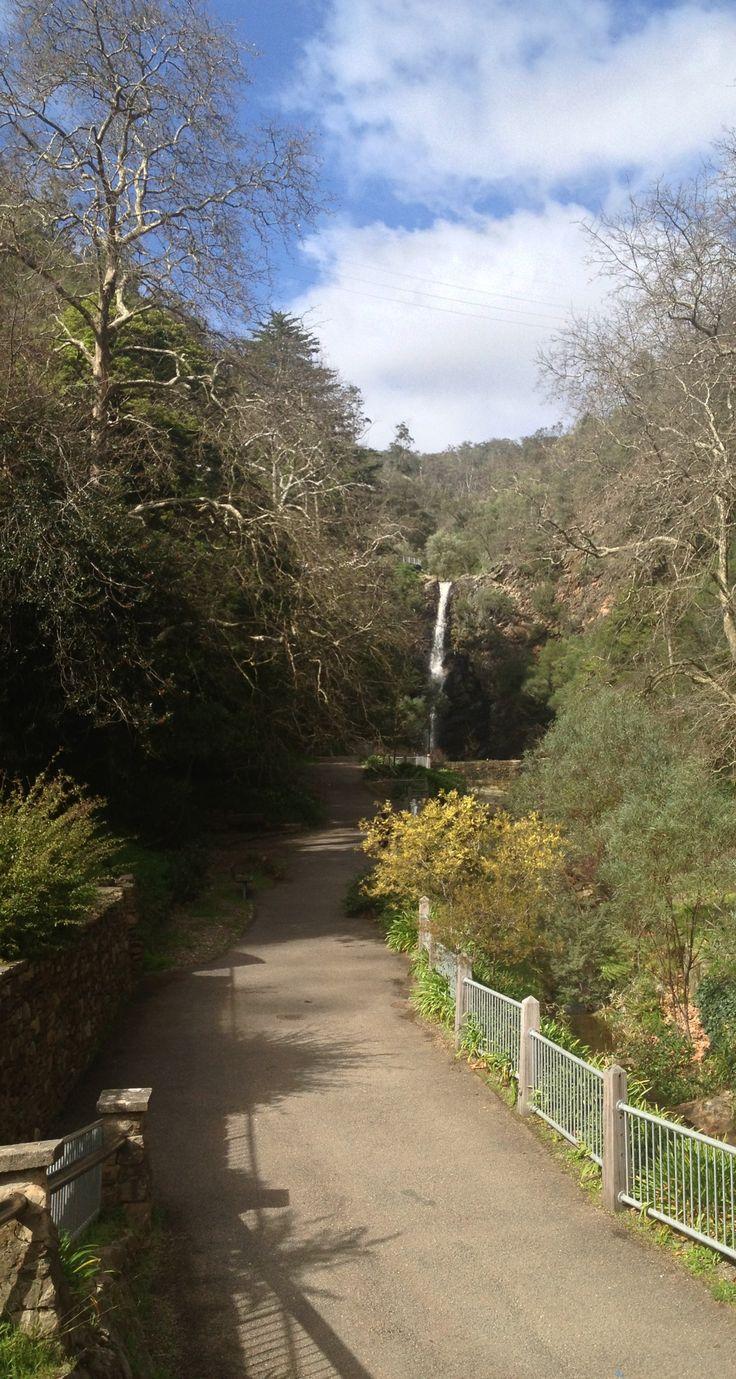 Start of Mount Lofty walk