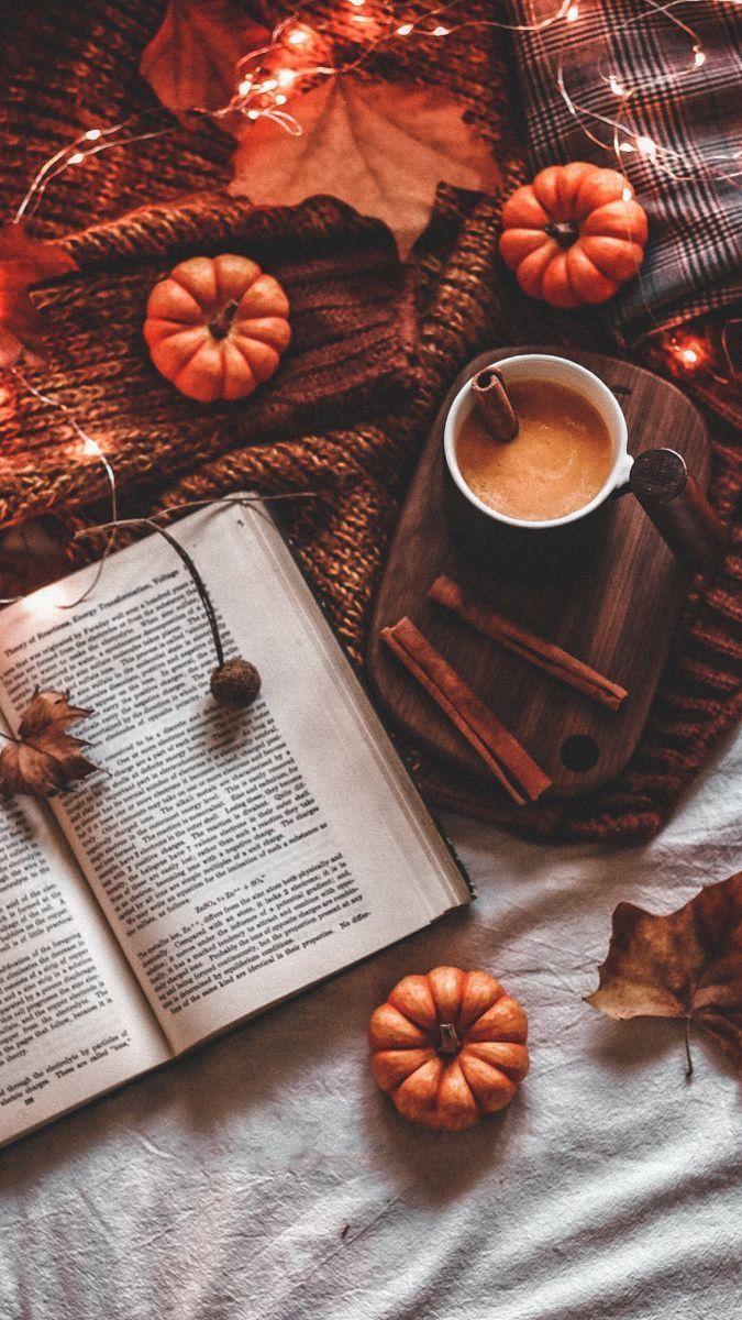 Dani Bueno Fotos tumblr de Outono   Cute fall wallpaper, Fall ...