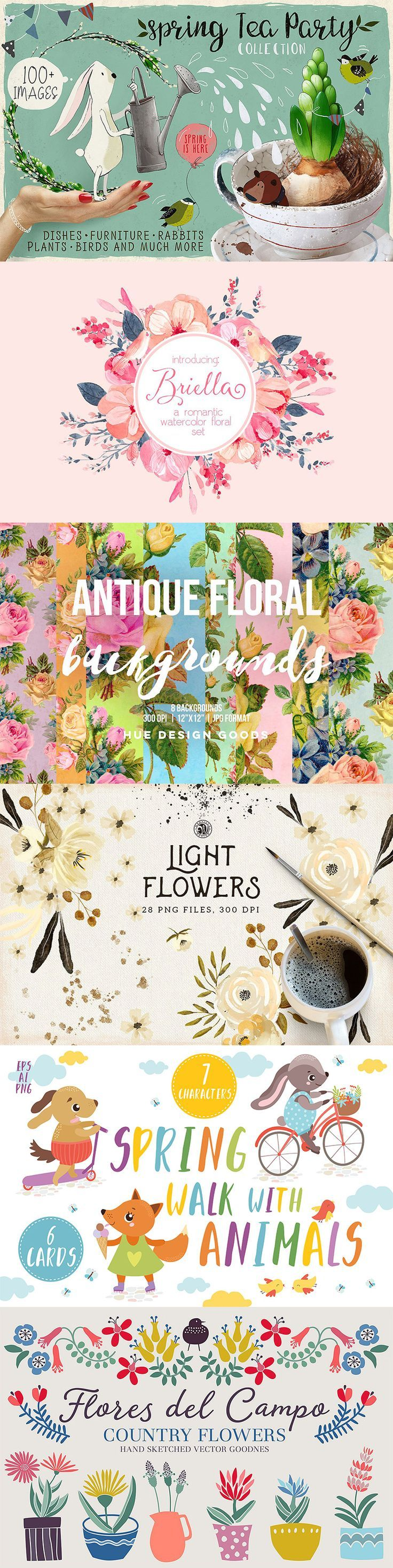 Beautiful animal and floral illustrations on Creative Market