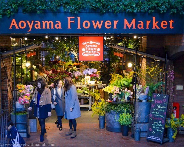 Aoyama Flower Market Tea House in Tokyo. Read fool review on www.travelwithnanob.com #dessert #travel #tokyo #japan