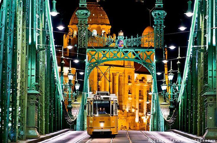 Szabadság híd - Budapest. Hungary. Rizsavi's Photo Blog