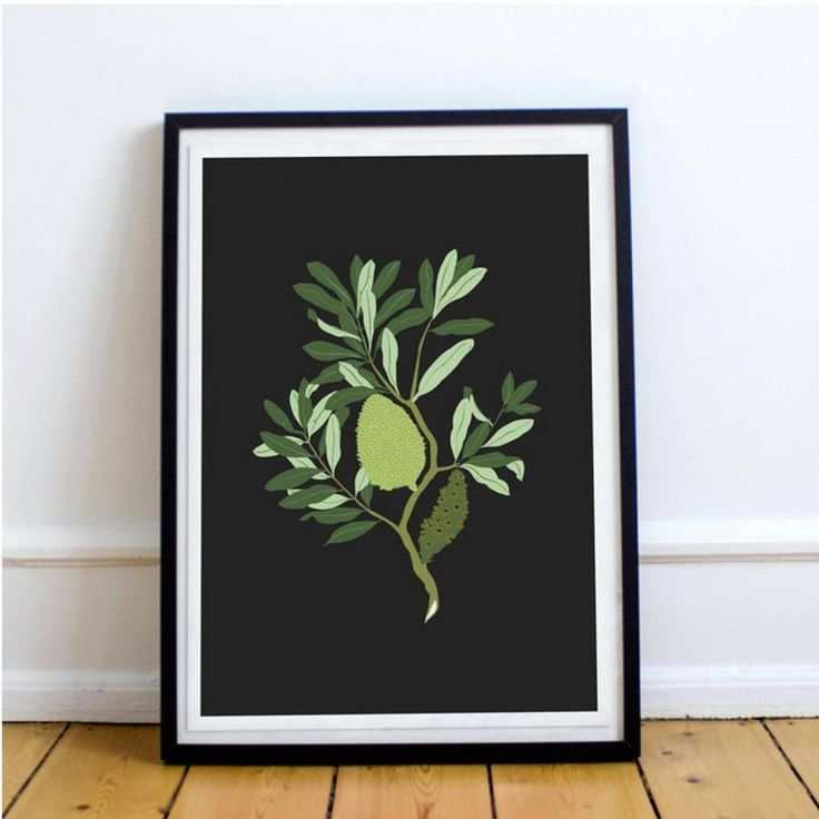 B A N K S I A The pretty Banksia Integrifolia comes in beautiful colour too! Printed A4 on lightly textured 300gsm heavyweight card #linkinbio . . #home #style #gift #sydney #banksia #madeinsydney #australianmade #foxheartco #lovely #thatsdarling #flowers #supportlocal #artsanddesign #design #graphicdesign #art #byfoxheart #abbotsford #fivedock #leichhardt #illustration #australiannatives #australianflora  #supportlocal #etsyau #etsy #etsyshop #etsyseller