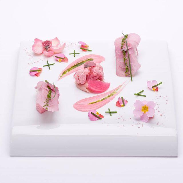 【chateaulapalmedor】さんのInstagramをピンしています。 《桜鯛と紅芯大根のアンサンブル 春の訪れ #津市 #ランチ #ディナー #レストラン #コース #ウェディング #結婚式 #プロポーズ #記念日 #デザート #オードブル #フランス #料理 #カフェ #きれい #美味しい #野菜 #魚 #パルムドール #無農薬 #春 #ピンク #桜 #ピンク #大根 #カリフラワー #ネギ #鯛 #今日は警察相談の日 #警察への電話相談番号「#9110」日にちなんで警察庁が制定したもの》