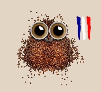 BIO-CAPS Café Bio en Capsules compatibles Nespresso