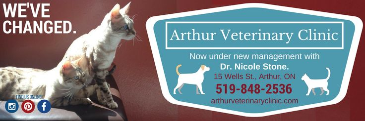 We've changed. Spot it in your local flyer! #vetclinic #local #business #graphicdesign #vet #veterinary #veterinarian #new #changes