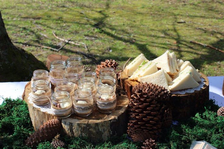 Platters / stands made from cut tree stumps
