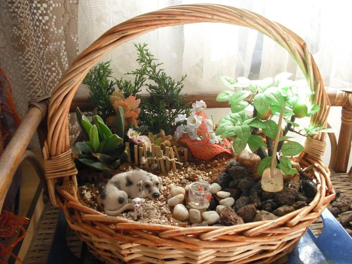 Fairy Garden Ideas For Small Spaces 180 best miniature garden images on pinterest | mini gardens